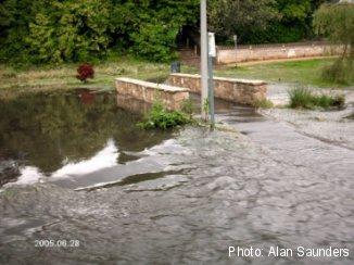 Coy Pond Gardens Flooding